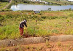Um elogio em meio as críticas: Copasa promove plantio de mudas de árvores no Balneário de São Gotardo