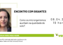 ENCONTRO COM GIGANTES: Entenda o papel dos microrganismos no aumento da qualidade do solo