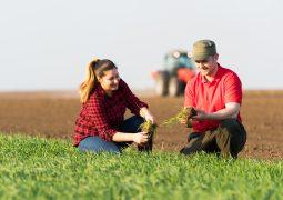 Campanha Prorrogada: Agricultores de Matutina podem ser heróis do campo com Campanha Cultivando Amor 2021