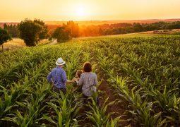 Campanha prorrogada: Agricultores de São Gotardo e Matutina podem ser heróis do campo com Projeto Cultivando Amor