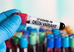 Variante delta: quais são os sintomas mais comuns da mutação do coronavírus?