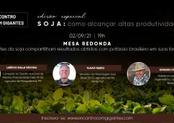 Gigantes da soja compartilham resultados obtidos com potássio brasileiro